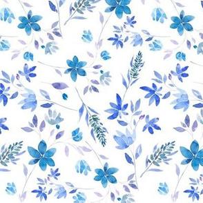 lavanda blue M