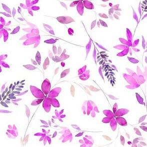 lavanda violet M