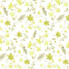 lavanda green S