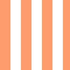 Large Tangerine Awning Stripe Pattern Vertical in White
