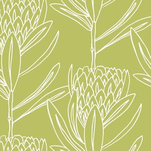 Protea Large - Celery Green