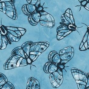 Marvelous Moths (Blue)