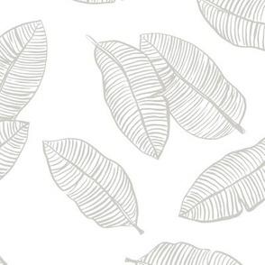 Jumbo banana leaves tropical botanical jungle garden boho nursery neutral mist gray green on white