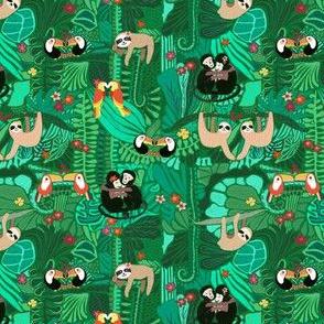 Sloths Monkeys Tropical Birds - Wildlife of Costa Rica - Small Scale
