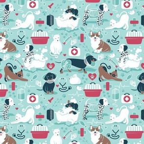 Tiny scale // VET medicine happy and healthy friends // aqua background red details navy blue white and brown cats dogs and other animals