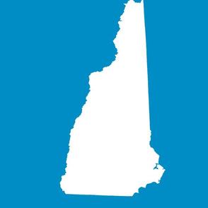 "New Hampshire silhouette, 14x18"" blocks, white on bright blue"