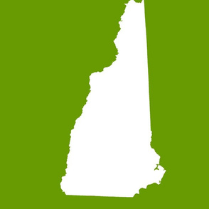 """New Hampshire silhouette, 14x18"""" blocks, white on leaf green"""
