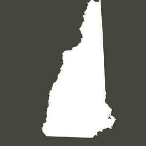 "New Hampshire silhouette, 14x18"" blocks, white on khaki"