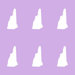 """New Hampshire silhouette, 6x9"""" blocks, white on lilac"""