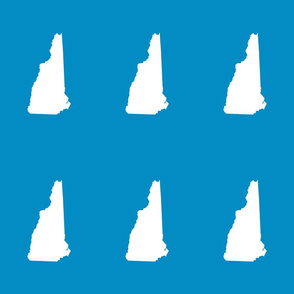 "New Hampshire silhouette, 6x9"" blocks, white on bright blue"