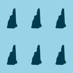 "New Hampshire silhouette, 6x9"" blocks, navy on light blue"