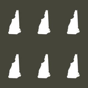 "New Hampshire silhouette, 6x9"" blocks, white on khaki"