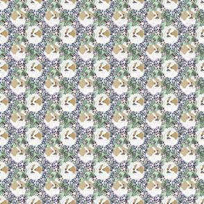 Small Floral Cream Parti Pomeranian portraits