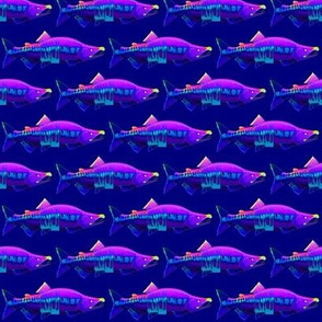 Chum Salmon in purple rock'n roll colors