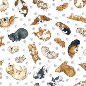 Sleeping Puppies Pattern-medium size