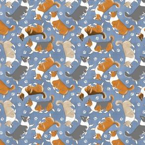 Trotting tailed Pembroke Welsh Corgis and paw prints - faux denim