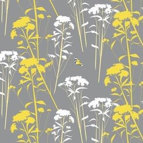 eupatorium flowers - gray-yellow