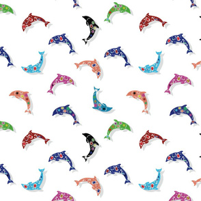 Colorful Dolphins on White