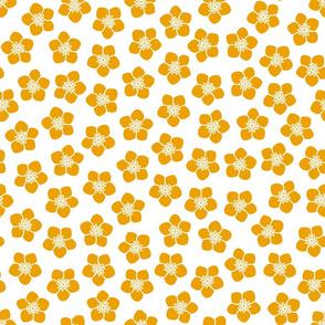 Golden Buttercup Texture