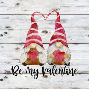 Be My Valentine Gnomes Girl and Boy on Shiplap - 18 inch square