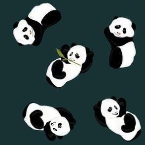 Snack Time Panda - Midnight