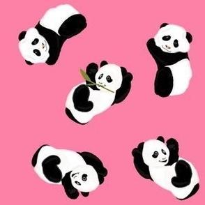Snack Time Panda - Pink