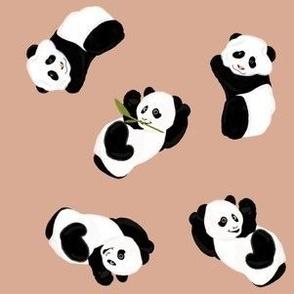 Snack Time Panda - Cashmere