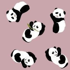 Snack Time Panda - Purple