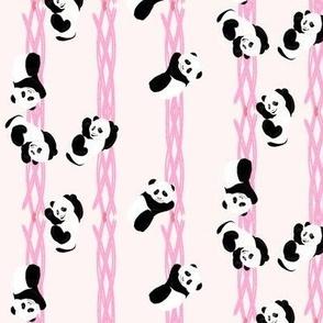 Climbing Pandas - Pink
