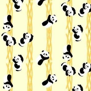 Climbing Pandas - Yellow