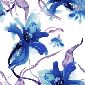Blue zinnias