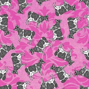Royal Moo -Pink