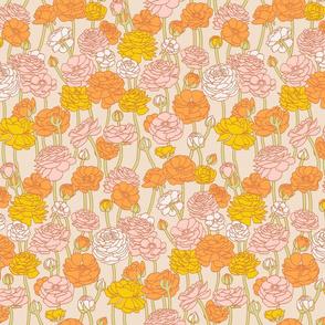 Ranunculus_Medium_Orange