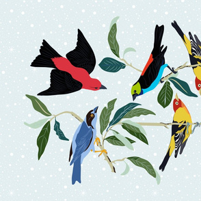 Colorful World of Tanagers