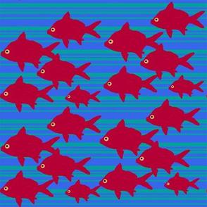 fish-contest-example