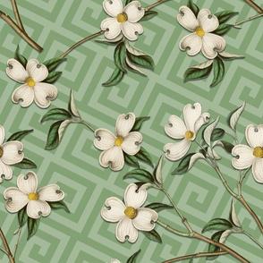 WHITE DOGWOOD GREEK KEY (GREEN)