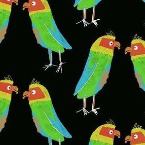 Love Birds on Black