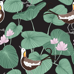 Tropical Birds and Lily Pads