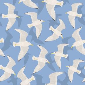 Seagull Sky