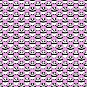 Panda_Bear repeat on pink smaller