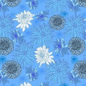 MyDahlias blue