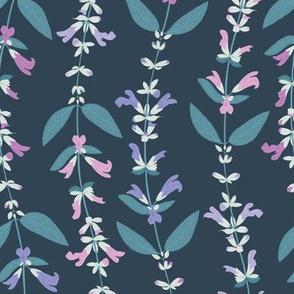 Sage Flowering - Night
