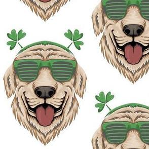 Funny Irish Dog