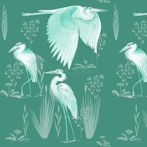 Herons Teal