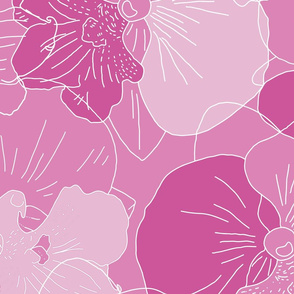 Pink Phalaenopsis Orchids - Jumbo Outlines