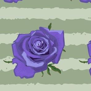 Jumbo Purple Roses on Sage Striped Green Background