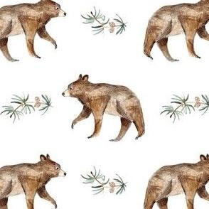 bear and fir
