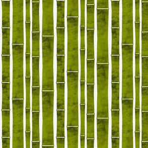 Indoor Bamboo Garden - Medium Scale