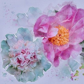 Large Size of Vivid Peonies in Watercolor