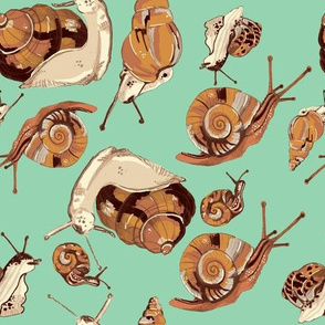 snail pattern-lt green